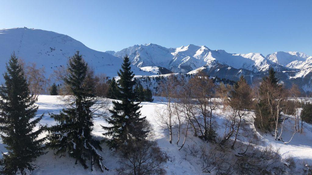Projet La Sarenne - Alpes d'Huez - ROUX OEUVRE MAITRISE